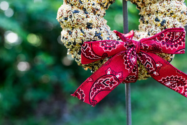 Bird seed wreath with red bow
